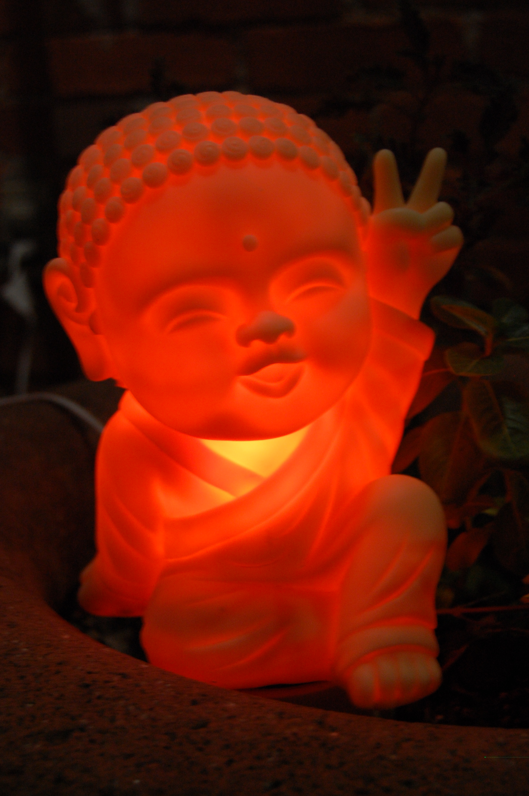 Illuminated Buddha
