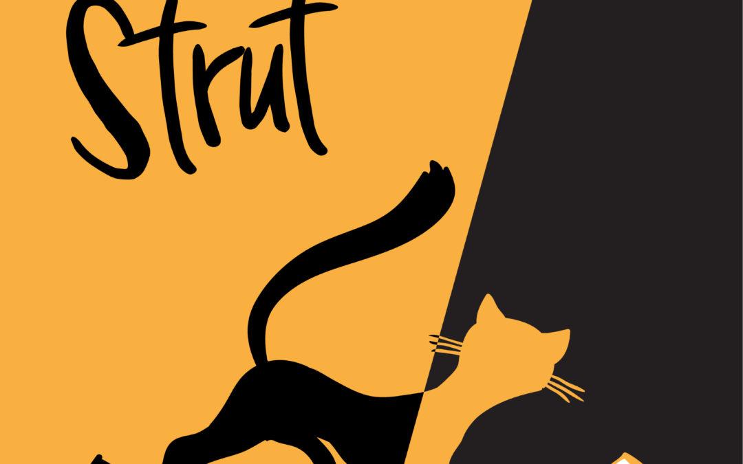 B&H – Stray Cat